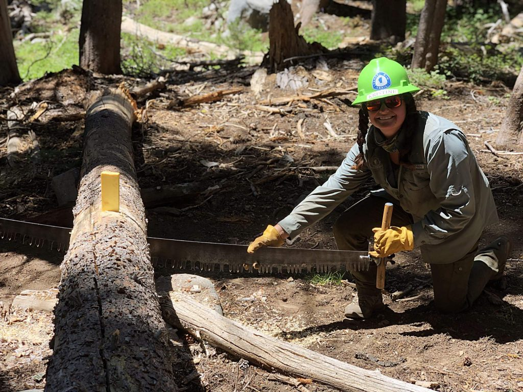 A volunteer clearing a fallen tree in Desolation Wilderness.