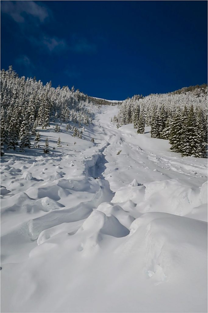 Avalanche forecasts can be found at www.sierraavalanchecenter.com.